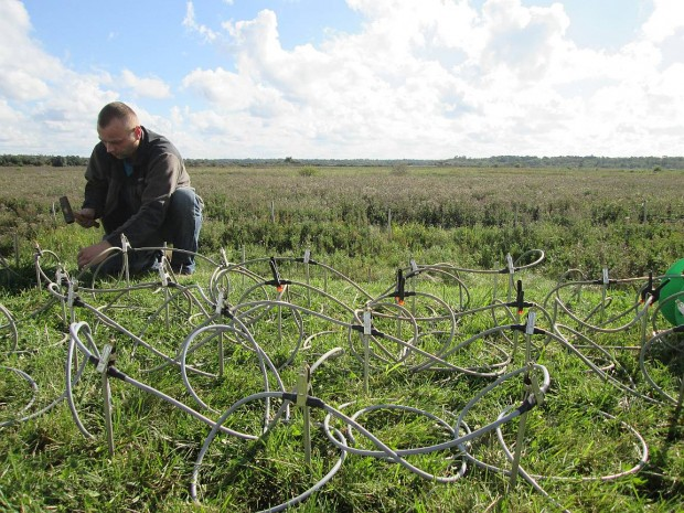 ERT electrodes installed on the dike crest at the DredgDikes research dike
